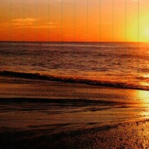 printed-nature-beach 2