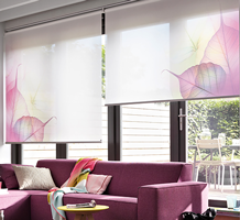 Buy Modern Window Blinds Online In South Africa At Blinds