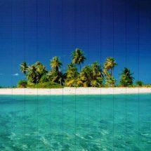 printed-nature-ocean4